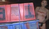 Thừa Thiên-Huế: Bắt giữ khẩn cấp 3 đối tượng, thu giữ 28,5 bánh cần sa