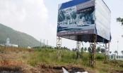 Thủ tướng Chính phủ yêu cầu xử lý nghiêm vi phạm về đất đai