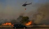 Cháy rừng dữ dội tại Pháp khiến hơn 1000 dân thường phải sơ tán