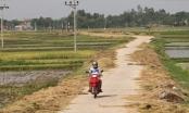 Huyện Việt Yên trở thành huyện nông thôn mới đầu tiên của tỉnh Bắc Giang