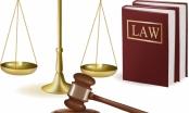 Luật sư chạy án - cám dỗ hay định kiến?