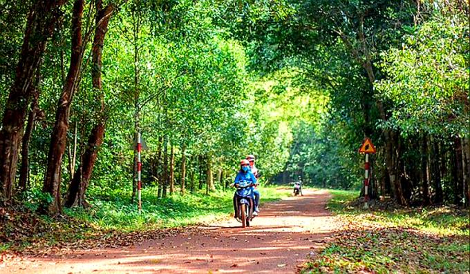Đồng Nai đầu tư 500 tỷ cho du lịch rừng tại Biên Hòa