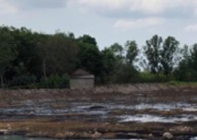 Doanh nghiệp sản xuất bột mì ở Nhơn Trạch xả thải ra môi trường