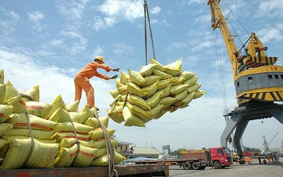 Bộ Công thương đề nghị xuất khẩu thóc nếp, gạo nếp, tấm nếp thực hiện theo nhu cầu thị trường