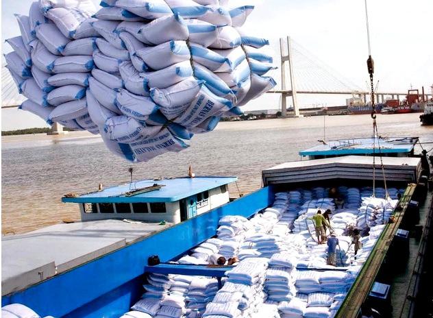 Tổng Cục Hải quan ban hành Văn bản hỏa tốc về việc đăng ký tờ khai xuất khẩu gạo