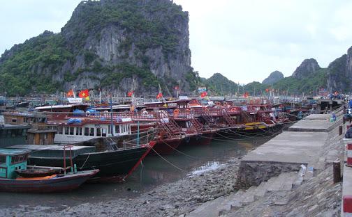 Quảng Ninh: Dừng cấp phép tàu tham quan, lưu trú ra các tuyến đảo do ảnh hưởng của bão số 2