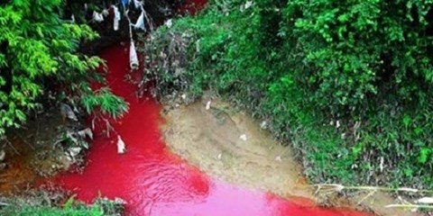 Dòng suối chuyển màu đỏ bất thường như màu máu, khiến người dân kinh hãi.