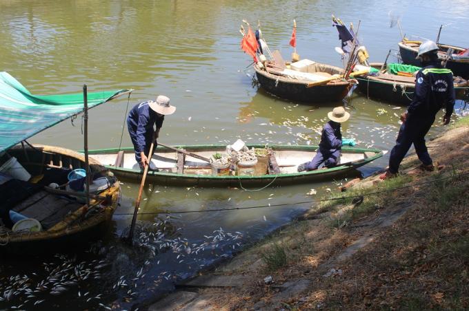 Công nhân công ty thoát nước và xử lý nước thải đang vớt cá chết.