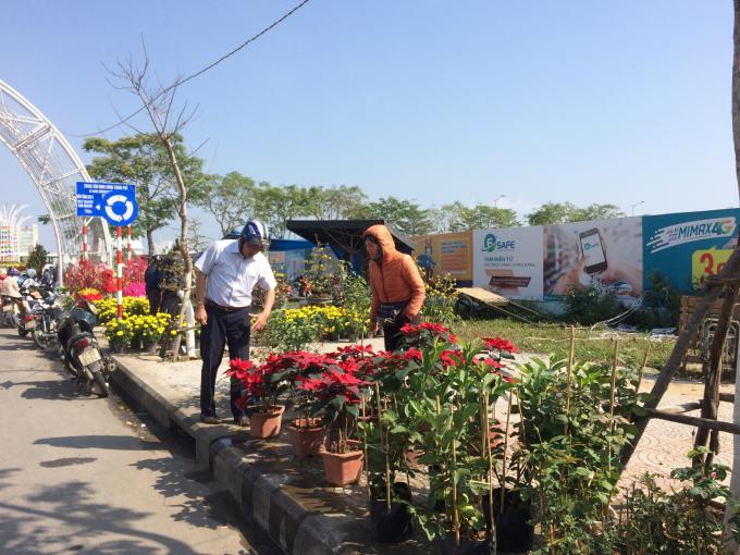 Những ngày cuối năm, Đà Nẵng nắng đẹp, khác xa hình ảnh giá lạnh mấy ngày trước đó. Người dân cũng tranh thủ đi ngắm hoa, mua hoa chuẩn bị cho năm mới.