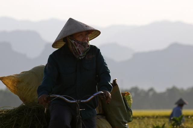 Một nông dân bên cánh đồng vừa được gặt xong.