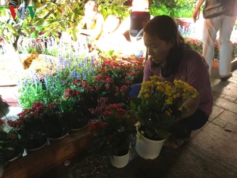 Nhiều người dân tranh thủ bưng những chậu hoa ưng ý về trước khi bị thu dọn.