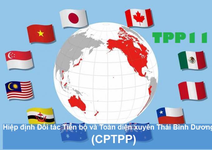 CPTPP là hiệp định có số phận long đong sau khi Mỹ rút lui.
