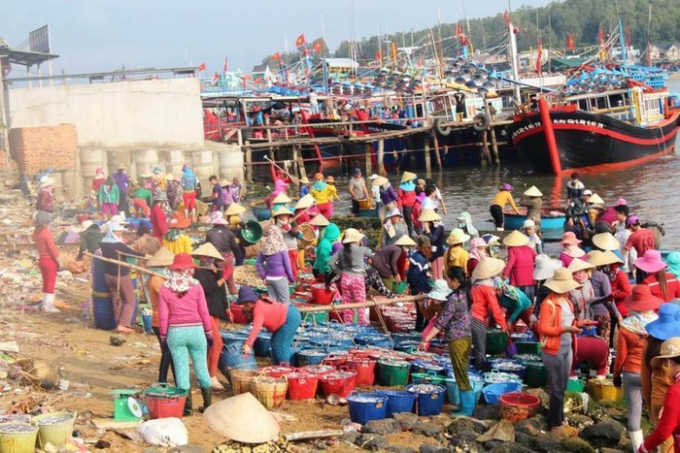 Quang cảnh nhộn dịp cảng cá Tịnh Kỳ sáng mùng 7 Tết (Ảnh - Lan Anh).