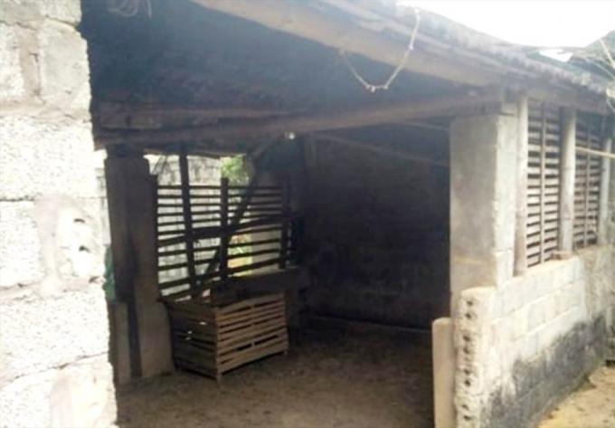 Khu vực chuồng trâu, nơi phát hiện ông Sơn treo cổ tự tử.