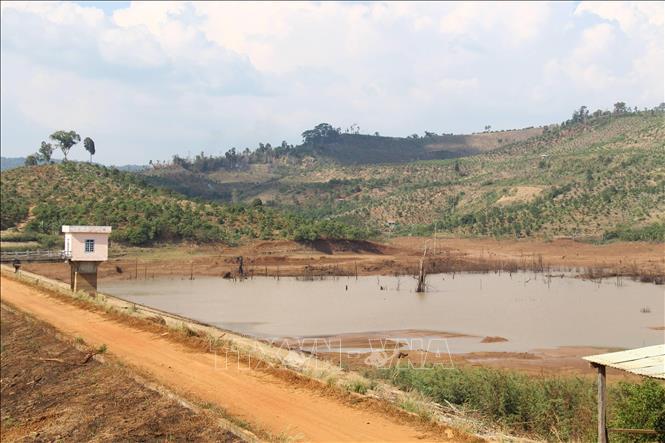 Đất đai xung quanh công trình chỉ thích hợp trồng cây lâu năm, nhưng các đơn vị tư vấn, thiết kế và chủ đầu tư dự án đã kê khai diện tích lúa nước hơn 250ha.