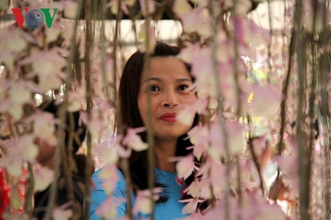 Ông Tống Thanh Hải, Phó Chủ tịch Thường trực UBND tỉnh Lai Châu cho biết, từ đầu năm đến nay địa phương thu hút khoảng 90 nghìn lượt du khách, trong đó có rất nhiều du khách đến để thưởng thức vẻ đẹp của hoa lan.