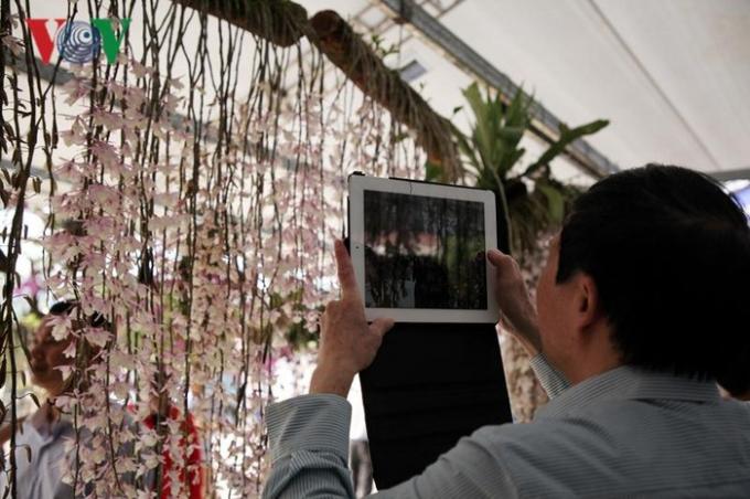 Các phương tiện cá nhân như điện thoại, ipac... được du khách dùng để lưu lại những hình ảnh đẹp của hoa lan Lai Châu