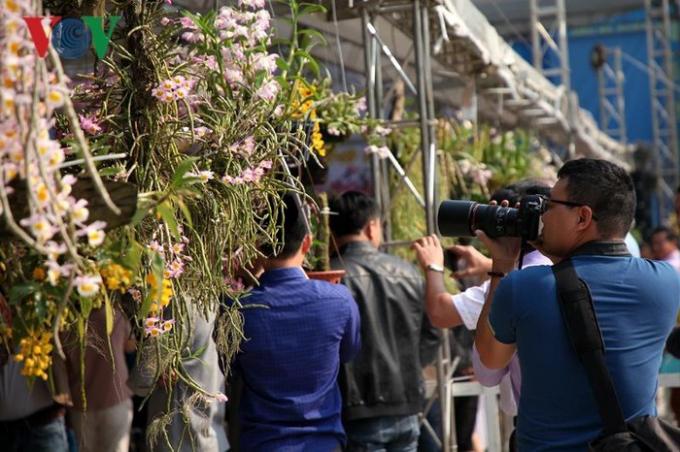 Triển lãm thu hút nhiều nhà báo tới chụp ảnh, đưa tin, báo hiệu một mùa du lịch hút khách đến với hoa lan rừng Lai Châu