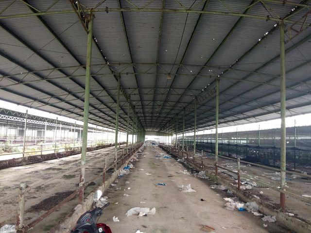 Tất cả các chuồng nuôi bị bỏ hoang, đang xuống cấp trầm trọng. Hệ thống mái tôn trải qua 4 năm nhưng đã thủng lỗ chỗ, hệ thống cột chống đỡ nhiều nơi xiêu vẹo.