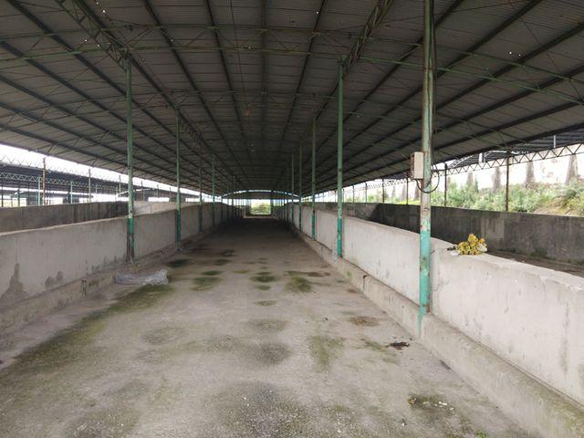 Hệ thống kho ủ, chứa thức ăn cũng bị bỏ trống trơ. Các máy móc cũng đã được rút đi.