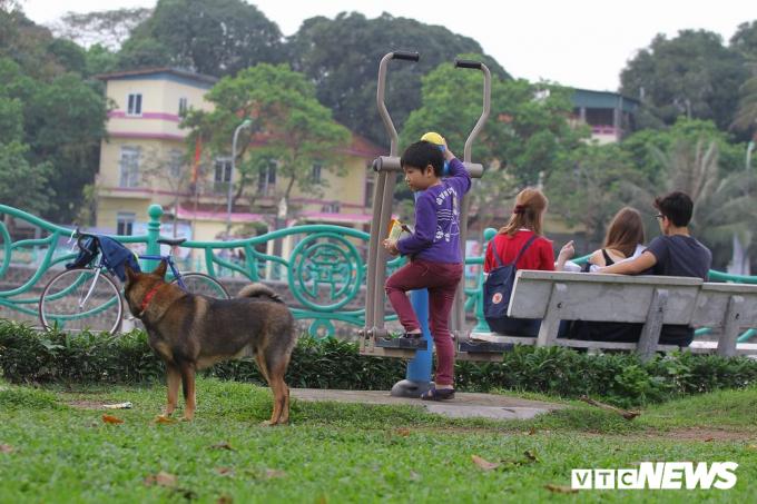 Một em bé tỏ ra đề phòng trước một con chó ngay sát mình.