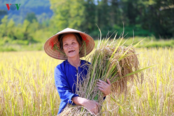 Xã Ngọc Sơn có 3 dân tộc chính là Tày, Nùng và Kinh, trong đó chủ yếu là người dân tộc Tày.