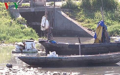 Ô nhiễm môi trường tại cả cá Thọ Quang.
