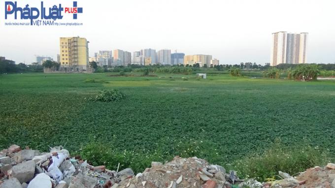 Khu đất dự án Bệnh viện Đa khoa Quang Trung bị chấm dứt hoạt động và thu hồi Giấy chứng nhận đầu tư.Ảnh: Lê Hải.