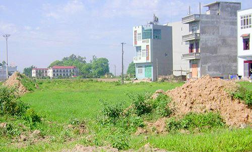 Thủ tướng đồng ý cho UBND tỉnh Thái Nguyên chuyển đổi 15,7 ha đất trồng lúa để làm dự án. Ảnh minh họa.