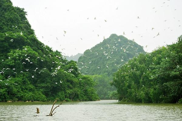 Khu du lịch Thung Nham khai thác chủ yếu dựa vào thiên nhiên thế nhưng hơn 10 năm qua vẫn không hề có ĐTM.