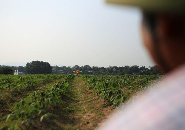 Để thả được những con diều khổng lồ, người thả phải mang con diều ra cách xa vị trí guồng dây khoảng vài chục mét để lấy đà.