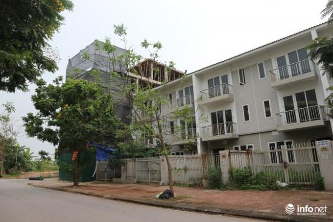 Dù thiết kế chỉ có 3 tầng nhưng căn liền kề này mọc lên 5 tầng....