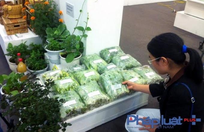Sản phẩm rau hữu cơ đã được nhiều người tiêu dùng tin tưởng sử dụng. (Ảnh: Yên Ba).