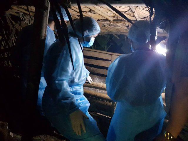 Tình hình dịch tả lợn châu Phi tại Thanh Hóa vẫn đang diễn biến hết sức phức tạp.