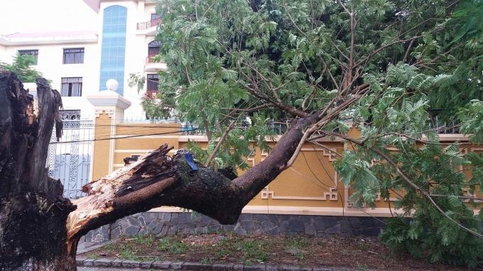 Do ảnh hưởng của bão số 4 nên rạng sáng 13/9 trên địa bàn tỉnh Thừa Thiên - Huế mưa to, gió lớn.
