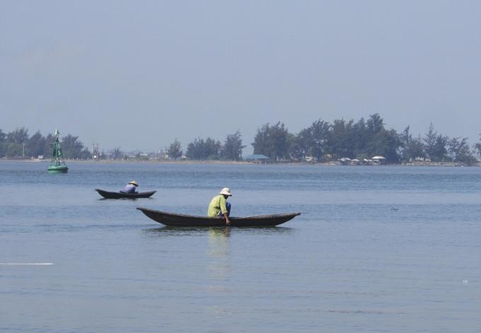 Một số ngư dân đã bắt đầu ra cào thăm dò trìa để đoán ngày thu hoạch.