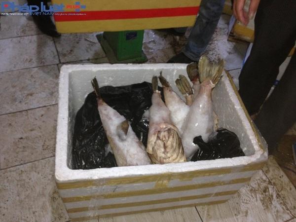 Một số loại hải sản đang trong quá trình hư hỏng, bị tịch thu