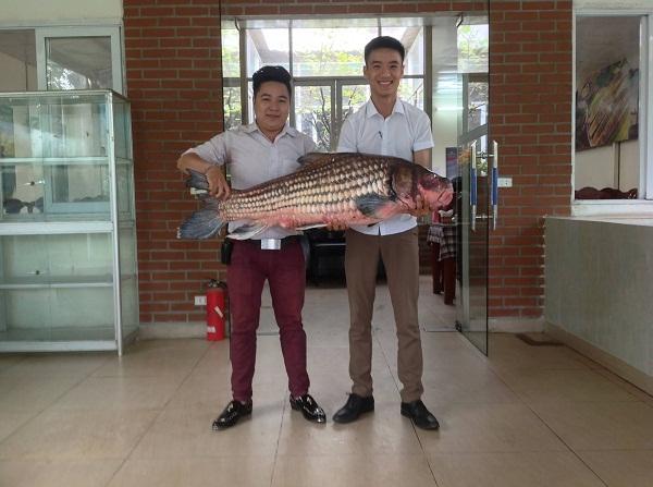 Một con cá Anh Vũ
