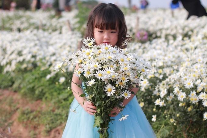 Loài hoa bé nhỏ mà cao quý, được chiều chuộng, được chăm sóc, nâng liu...như chính những gì trẻ thơ cần được hưởng.