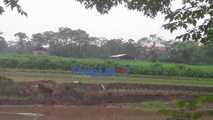 Giữa cánh đồng trên phần đất nông nghiệp xuất hiện nhiều ngôi nhà.