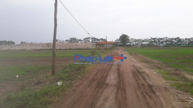 UBND xã Hồng Châu còn cho thuê đất làm bãi tập kết cát giữa cánh đồng