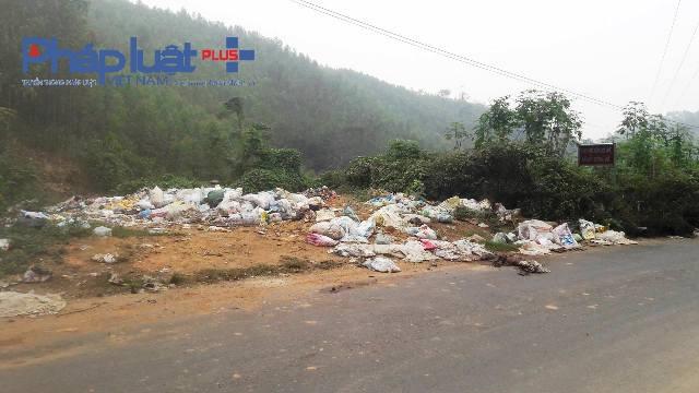 Nhiều bao tải lợn chết vứt tại bãi rác thuộc xã Bắc Bình, huyện Lập Thach (Ảnh Đào Tấn)
