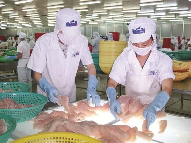 Thuỷ sản Hùng Vương thu về gần 490 tỷ sau thoái vốn tại Thực phẩm Sao Ta. Ảnh Nhipcaudautu.vn