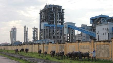 Nhà máy Đạm Ninh Bình vẫn đang trong tình trạng thua lỗ nghiêm trọng