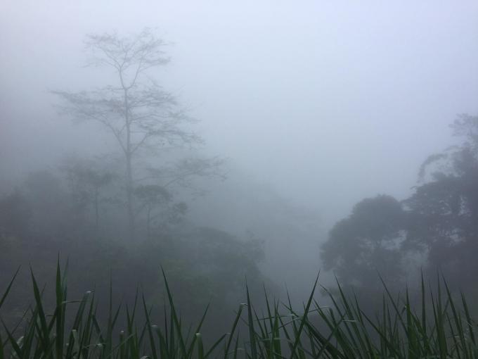 Cảnh sương mù xế chiều vùng núi Kỳ Sơn - Nghệ An
