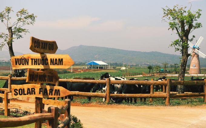 Hệ thống chất thải tại trang trại được xử lý nghiêm ngặt để bảo vệ môi trường.