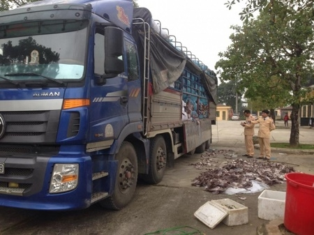 Chiếc xe tải hạng nặng đang chở hơn 20 tấn mực đang trong quá trình phân hủy. (Ảnh: Đông Bắc)