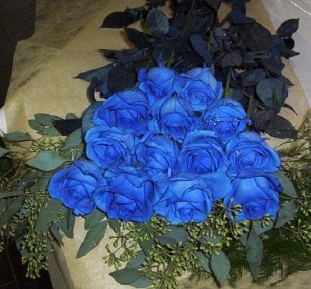 Hoa hồng xanh tượng trưng cho sự chân thành và sự bất diệt trong tình yêu được bán với giá cao.