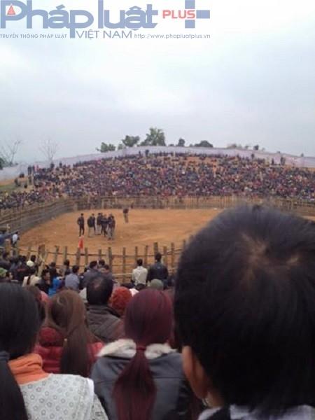Rất đông du khách và người dân địa phương tham dự lễ hội chọi trâu. (Ảnh: Đông Bắc).