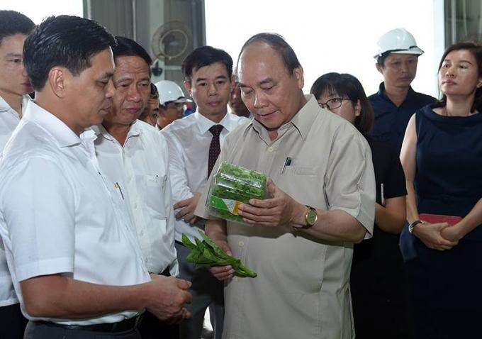 Thủ tướng Nguyễn Xuân Phúc thăm mô hình nông nghiệp công nghệ cao tại xã Tam Đa.